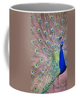 Vain Coffee Mug