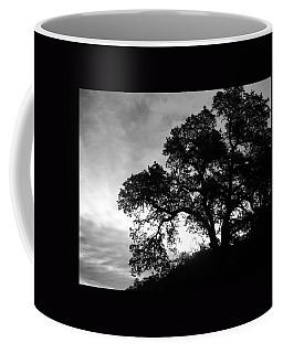 Valley Oak Coffee Mug by Jennifer Muller