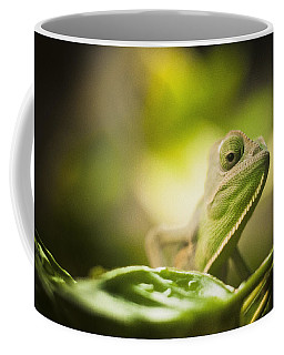 Veiled Chameleon Is Watching You Coffee Mug by Bradley R Youngberg