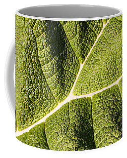 Veins Of A Leaf Coffee Mug