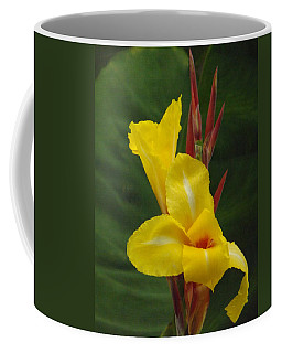 Velvety Yellow Iris  Coffee Mug