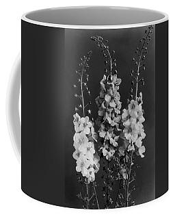 Verbascum Phoeniceum Flowers Coffee Mug