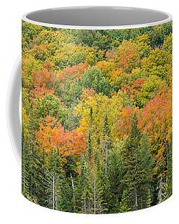 Vermont Autumn Fall Panorama Forest Foliage Coffee Mug