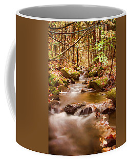 Coffee Mug featuring the photograph Vermont Stream by Jeff Folger