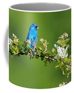Vibrance Of Spring Coffee Mug
