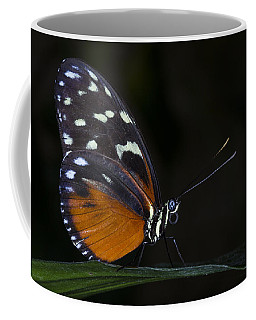 Vibrant Beauty Coffee Mug