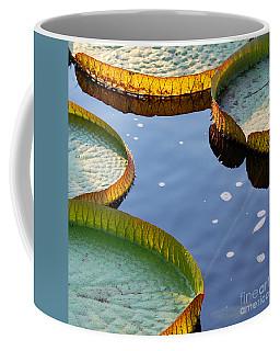 Victoria Waterlilies Coffee Mug