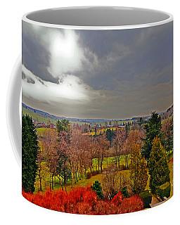 View Of Belgium Coffee Mug