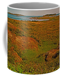 Viking Landing Point At L'anse Aux Meadows-nl Coffee Mug