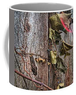 Coffee Mug featuring the photograph Vines And Barns by Daniel Sheldon
