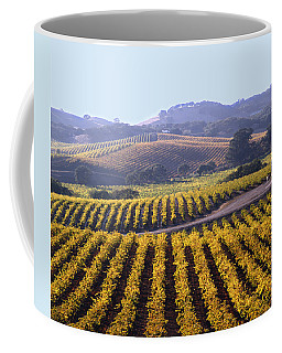 6b6386-vineyard In Autumn Coffee Mug