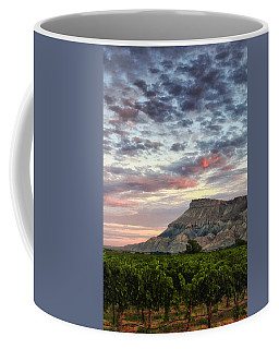 Vineyards And Mt Garfield Coffee Mug