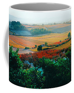 Vineyards In The Late Afternoon Autumn Coffee Mug