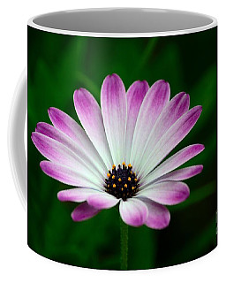 Violet And White Flower Petals With Yellow Stamens Blossoms  Coffee Mug