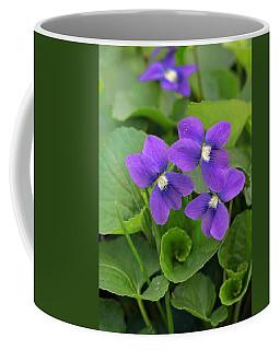 Violet Trio Coffee Mug