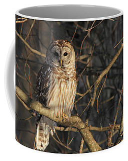 Waiting For Supper Coffee Mug