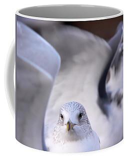 Waiting In The Wings Coffee Mug