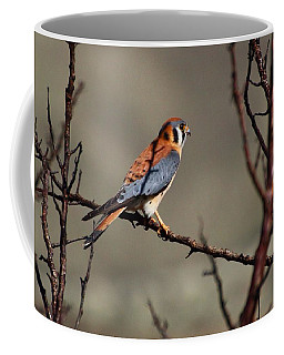 Waiting Coffee Mug by Lynn Hopwood
