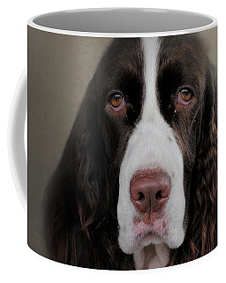 Waiting Patiently - English Springer Spaniel Coffee Mug