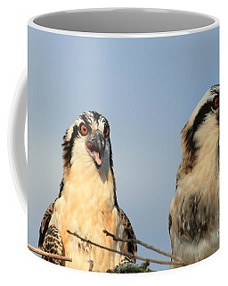 Coffee Mug featuring the photograph Waiting To Fly by Geraldine DeBoer