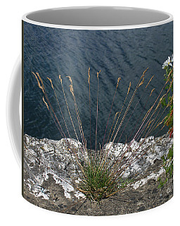 Coffee Mug featuring the photograph Flowers In Rock by Brenda Brown