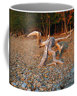 Walking On The Beach Coffee Mug