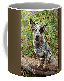 Wanna Play Coffee Mug
