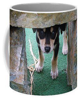 Wannabe Sled Dog In The Yukon Coffee Mug by Richard Rosenshein