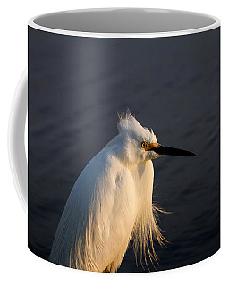 Warming Sunrays Coffee Mug