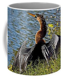 Wash And Dry Coffee Mug