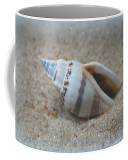 Washed Ashore Seashell Treasure Coffee Mug by Ella Kaye Dickey