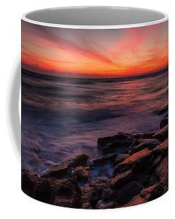 Washington Oaks Winter Sunrise Coffee Mug