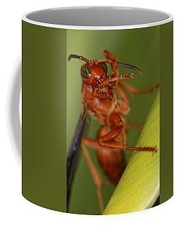 Wasp 3 Coffee Mug