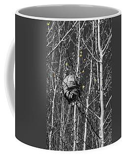Wasp Nest In Aspen Coffee Mug