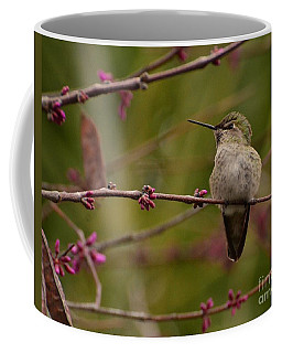 Watching Spring Arrive Coffee Mug