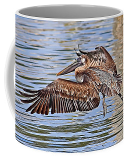 Coffee Mug featuring the photograph Water Ballet - Brown Pelican by HH Photography of Florida