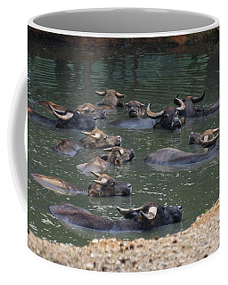 Water Buffalo Coffee Mug