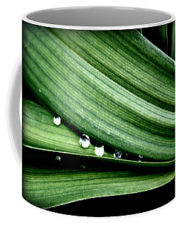 Coffee Mug featuring the photograph Water Droplets by Jennifer Muller