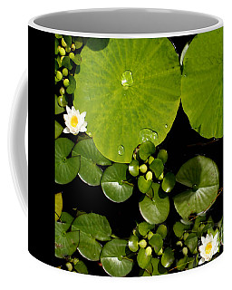 Water Drops Bristol Rhode Island Coffee Mug
