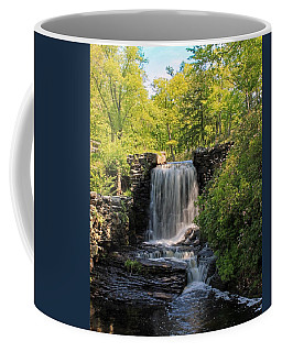 Water Fall Moore State Park 2 Coffee Mug