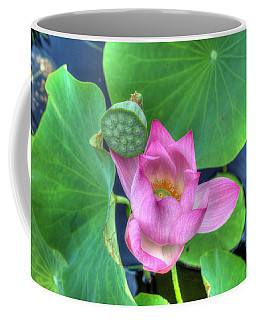 Water Flower Coffee Mug