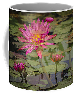 Water Garden Dream Coffee Mug