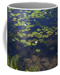 Coffee Mug featuring the photograph Water Lilies by Fran Riley