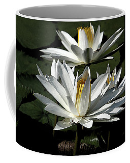Coffee Mug featuring the photograph Water Lilies by John Freidenberg