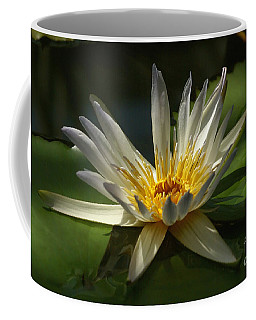 Water Lily 2 Coffee Mug by Rudi Prott