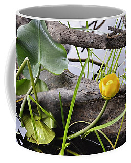 Coffee Mug featuring the photograph Water Lily by Cathy Mahnke