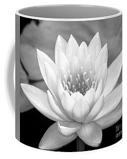 Water Lily In Black And White Coffee Mug
