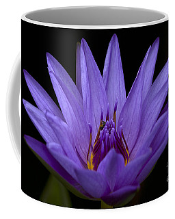 Coffee Mug featuring the photograph Water Lily Photo by Meg Rousher