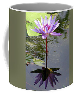 Water Lily - Shaded Coffee Mug by Pamela Critchlow
