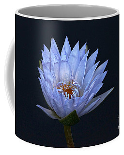 Water Lily Shades Of Blue And Lavender Coffee Mug